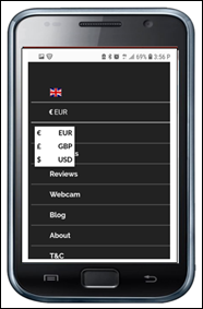 Mobile View Menu